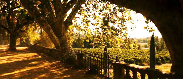 Provencal villa,Chateau La Canorgue,villa in Good Year movie (7)[1]